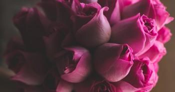 Bouquet Benção
